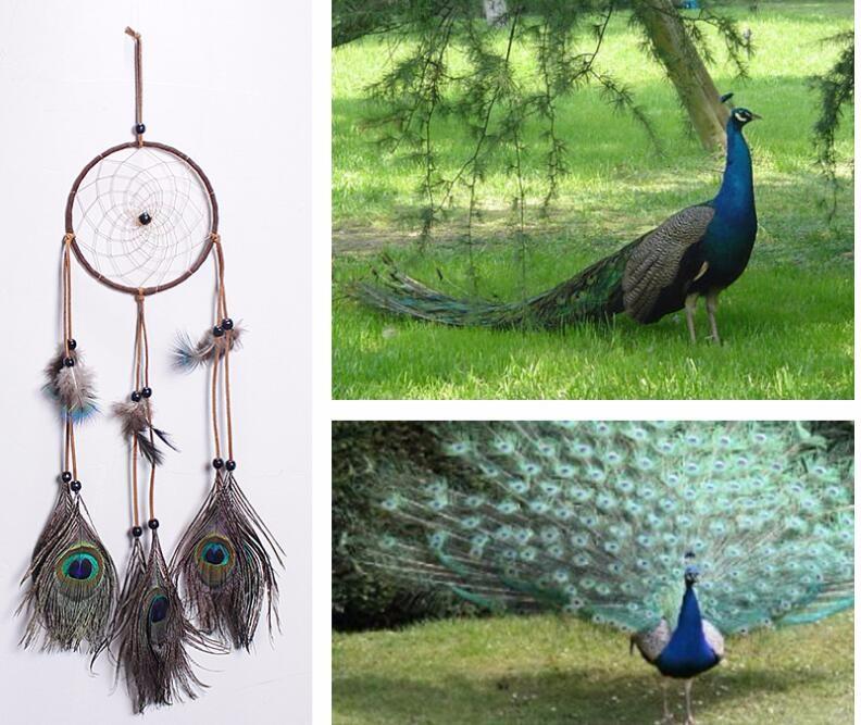 孔雀羽毛 ドリームキャッチャー インド風 部屋飾り 壁飾り 車飾り  捕夢網 風鈴 手作り 装飾品