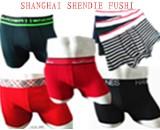 SHANGHAI SHENDIE FUSHI