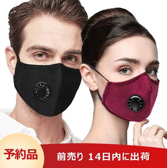 マスク 防塵マスク 通気性  バルブ 5枚